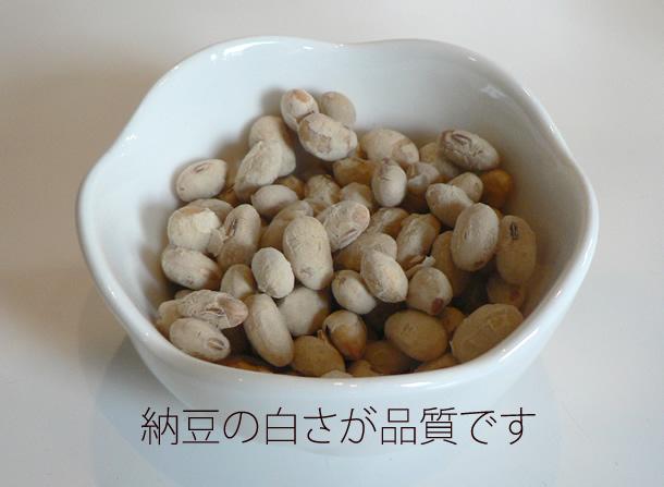 sn-natto